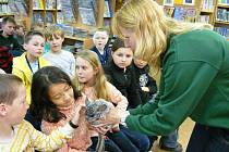 Žáci prvních a třetích tříd havlíčkobrodských škol Nuselská a V Sadech mají novou zkušenost. V  brodské knihovně si totiž mohli pohrát s několika zvířaty, která jim přivezla ukázat zaměstnankyně jihlavské zoologické zahrady Martina Davidová (na snímku).