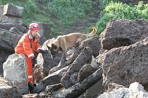 Speciálně vycvičení psi našli v sutinách už jen mrtvé.