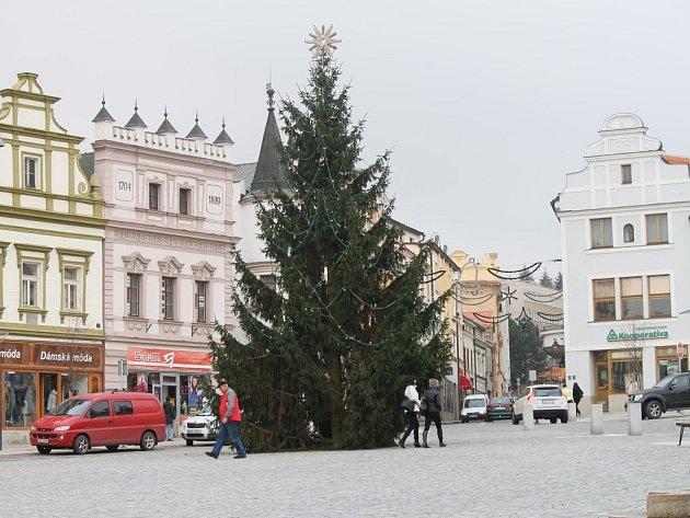Vánoční strom darovala rodina Rybářova z Jihlavské ulice v Brodě. Strom pokáceli zaměstnanci technických služeb, o jeho naložení a převoz na místo určení se pro změnu  postarali lidé z havlíčkobrodské společnosti Chládek a Tintěra.