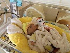 Zrekonstruované prostory porodnice v Havlíčkobrodské nemocnici se pro veřejnost otevřely 7. září.