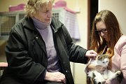 Návštěva kočičího útulku Mikeš HB v rámci projektu Ježíškova vnoučata