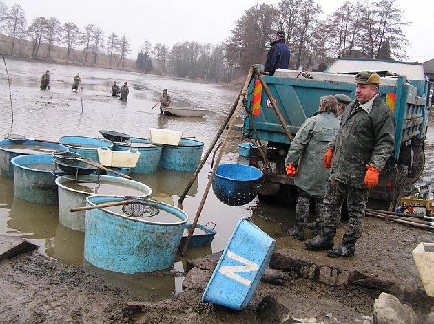 Mlýnský rybník v Dolní Krupé vydal o víkendu asi sto metráků ryb.