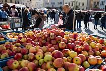 Farmářské trhy a bramborářský den na Havlíčkově náměstí v Havlíčkově Brodě.