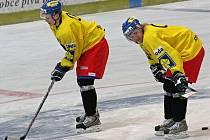 Útočníci Pavel Kubiš (vlevo) a Tomáš Netík se na tréninku české hokejové reprezentace v Havlíčkově Brodě připravují na další nácvik souhry jednotlivých formací.