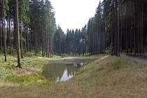 Obnovená kaskáda vodních nádrží v lesích u Ledče.