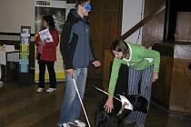 Zkuste si to. Odvážní návštěvníci Veletrhu sociálních služeb měli možnost vyzkoušet si na vlastní kůži, jaké to je být nevidomým, odkázaným na pomoc čtyřnohého kamaráda.