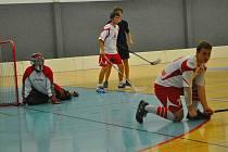 Bod získali brodští florbalisté (na snímku v bílém) v turnaji při oslavách patnácti let od založení klubu. Nerozhodný výsledek uhráli s Buldogs Brno.