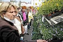 Zahrádkáři se každý rok na prodejní výstavě Zahrada zásobují vším, co budou na sezonu potřebovat: sazenice, zahrádkářské potřeby, zahradní nábytek...