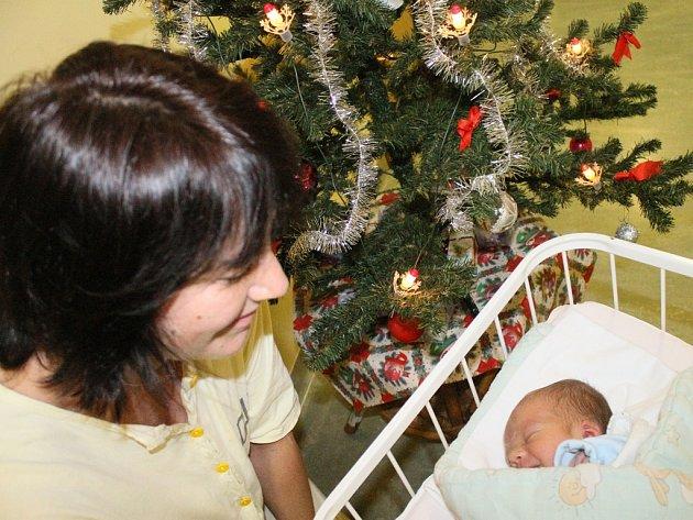 Malý Michal. Novopečená maminka, která jen zářila štěstím, si malého Michala alespoň symbolicky nadělila pod nemocniční vánoční strom.