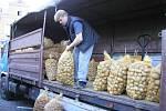 Naše domácí brambory jsou podle odborníků  kvalitní a zaslouží si pozornost spotřebitelů.