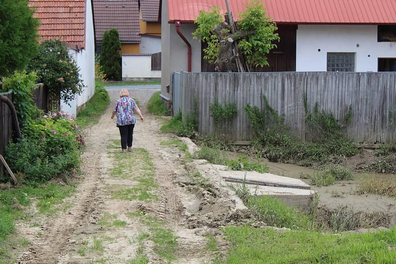 Symbol zatopených Olšinek - zanesený rybník bahnem.