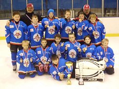 Dva nejcennější kovy si vybojovali mladší hokejový žáci Chotěboře na turnaji v domácím prostředí a v Opočně.