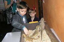 Junior nabízí dětem množství kroužků. Například kroužek mladých teraristů.