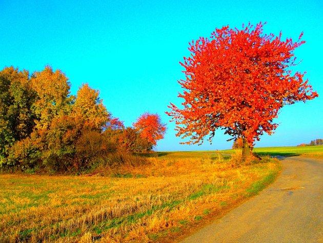 Podzim na Vysočině.