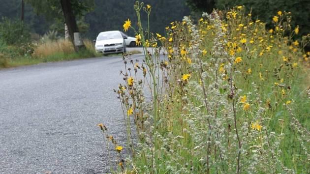 Problém. Neposekaná tráva v příkopech kolem silnic může být větším problémem, než by se na první pohled zdálo. O tom, zda budou pozemky kolem silnic v obcích udržovány, rozhodnou zákony.