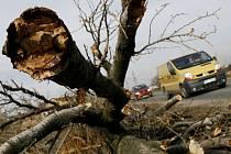 Stromy a auta nejdou dohromady. Zachovat ráz krajiny a riskovat lidské životy, nebo stromy u silnic pokácet? Není to lehké rozhodování. Stromy na I/38 brání i opravě vozovky (ilustrační foto).