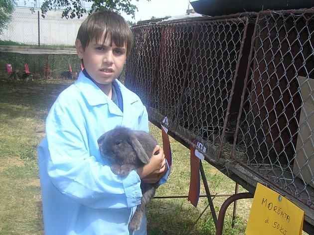 Teprve jedenáctiletý Martin Domkář je už zdatným chovatelem modrých králíků.
