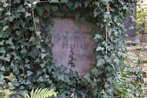Přerostlý břečťan skoro zakrývá epitaf spisovatelky: Kdo v poesie klínu dřímal – neumírá, ale dále žije ve svém díle. Anna Jahodová-Kasalová spisovatelka.