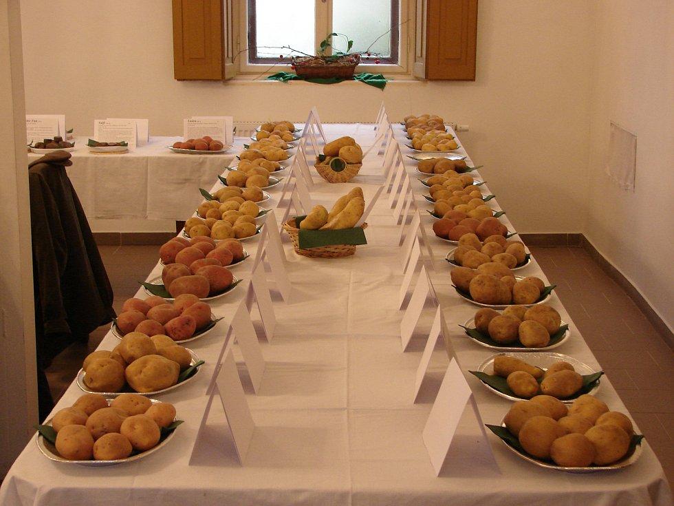 Výstava a ochutnávka brambor v Lukově.