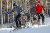Na Vysoké se od soboty lyžuje