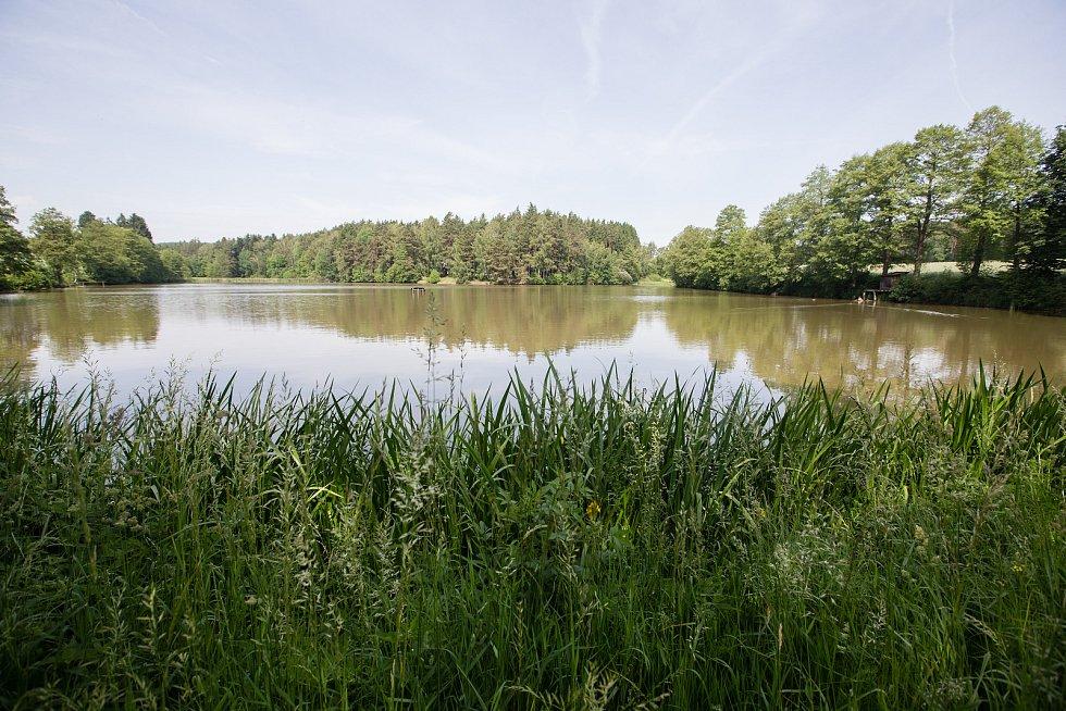 Sběr vzorků vody z Ředkovského rybníka na Havlíčkobrodsku.
