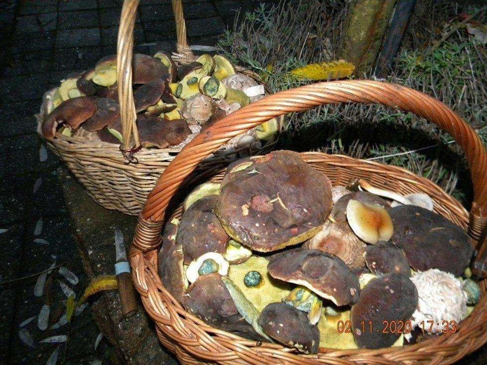 Jaroslav Líbal je nejen zkušený houbař, ale také znalec regionální historie.