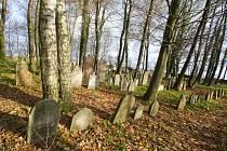 Barokní a klasicistní kameny z pískovce na židovském hřbitově zvětraly a některé už nejsou čitelné. Nejstarší datum, které tady ještě lze přečíst, má letopočet 1740.
