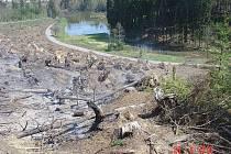Požár lesního porostu u Dvorku.