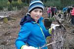 Sázení stromků na Pelestrově.