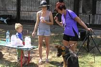 psi soutěžili bez ohledu na rodokmen a velikost