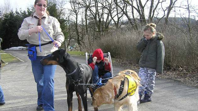 Hrátky se zvířátky: skauti učili děti komunikovat se psy