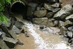 Potok v lokalitě Na Fialkách ve Světlé nad Sázavou. Foto: Roman Doktor