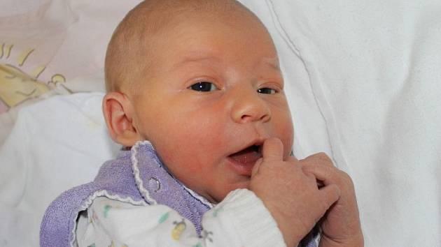 Anna Šimanovská, Polná, 19. 11. 2012, 3350 g