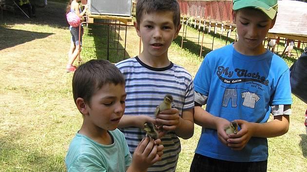 Na okresní chovatelskou výstavu zavítaly stovky návštěvníků.