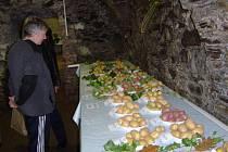 Nejkvalitnější odrůdy brambor oceněné odbornou porotou mohou návštěvníci výstavy ochutnat ve sklepení přibyslavské radnice.