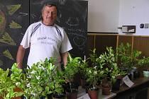 Pěstitelů citrusových plodů podle Josefa Bratršovského stále ubývá.