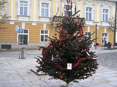 Strom splněných přání na Havlíčkově náměstí.