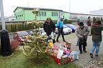 Vánoce v chrudimském útulku