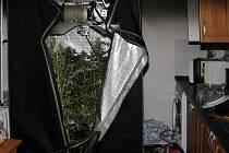 V bytě, který zasáhl požár, byla odhalena také nezákonná domácí pěstírna marihuany.