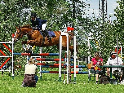 Při závodech ve Vestci si přišli na své  vyznavači krásy jezdeckých koní.