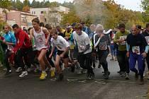 31. ročník populárního lesního běhu Velká cena Monaka.