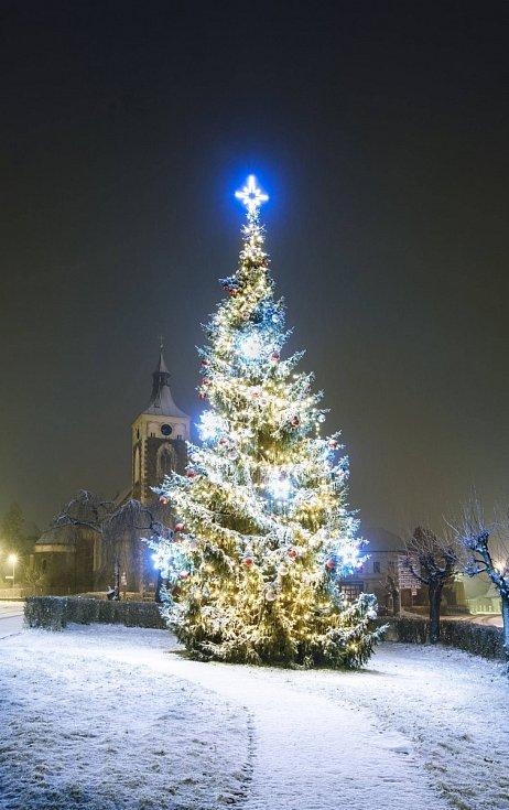 Vánoční strom - Proseč