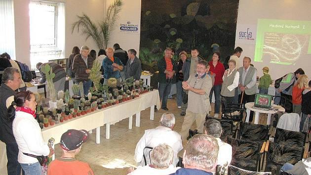 Tématem hlinecké výstavy byly houby a kaktusy.
