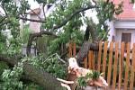 JAK KONEC SVĚTA. Ranní obrázky z Bítovan. Tady zanechala včerejší bouřka opravdovou spoušť.