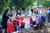 1. září: Na nádvoří Základní školy v Ronově nad Doubravou školáci s rodiči společnými silami vysadili na strom jako vzpomínku na školní léta.