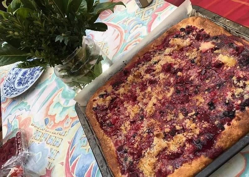 Kynutý koláč s borůvkami.