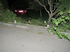 Opilý šofér zajel na zahradu.