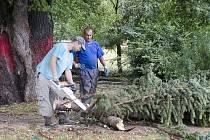 Následky silné bouřky v Chrudimi - Park Republiky.