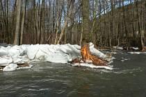 Ledové kry na Krounce u obce Brdo.
