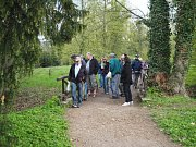 Vycházka za jarní přírodou do zámeckého parku v Heřmanově Městci.